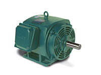 170006.60, AC Three Phase ODP Motors