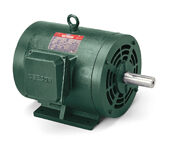 171574.60, AC Three Phase ODP Motors