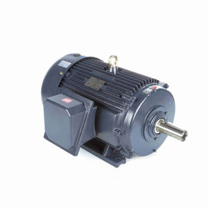 AC Three Phase Crusher Duty Motors